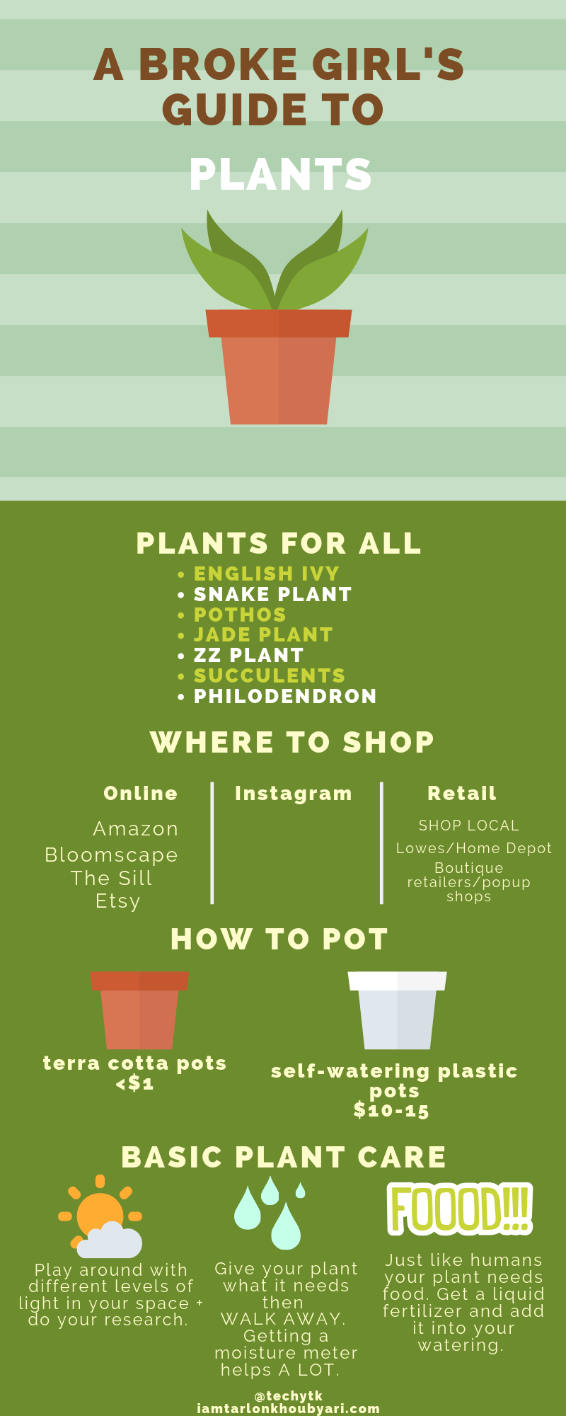 A Broke 's Guide To Plants – Techy TK on home depot gifts, home depot balloons, home depot food, home depot shrubs, home depot birthday, home depot wedding, home depot orchids, home depot fountains, home depot flowers, home depot herbs,